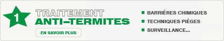 traitement anti termite bois