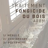 traitement-fongicide-du-bois-apbm